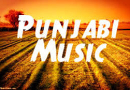 Punjabi music industry 2014 ,One track approach